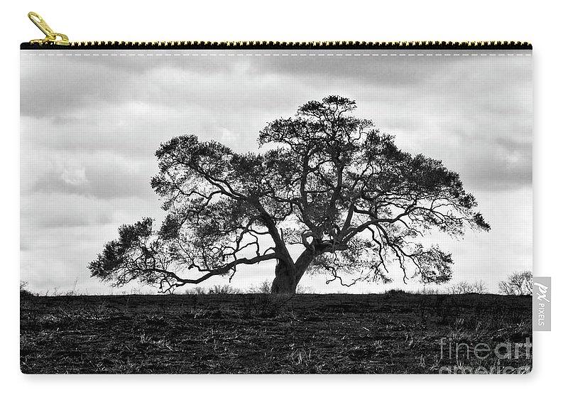 Oak Tree Carry-all Pouch featuring the photograph Tortue Oak by Scott Pellegrin