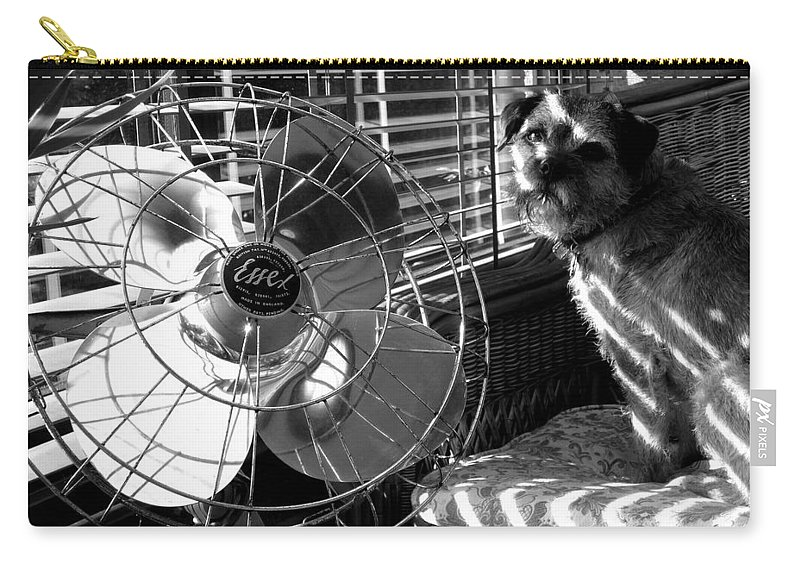 Electric Fan Carry-all Pouch featuring the photograph Toto Checks In by Charles Stuart