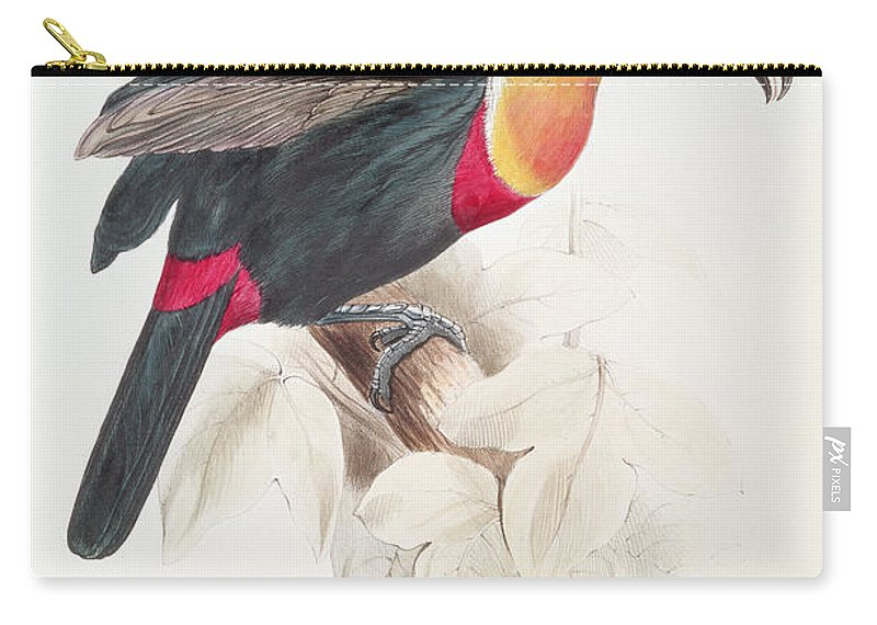 Sulphur Carry-all Pouch featuring the painting Toucan by Edward Lear