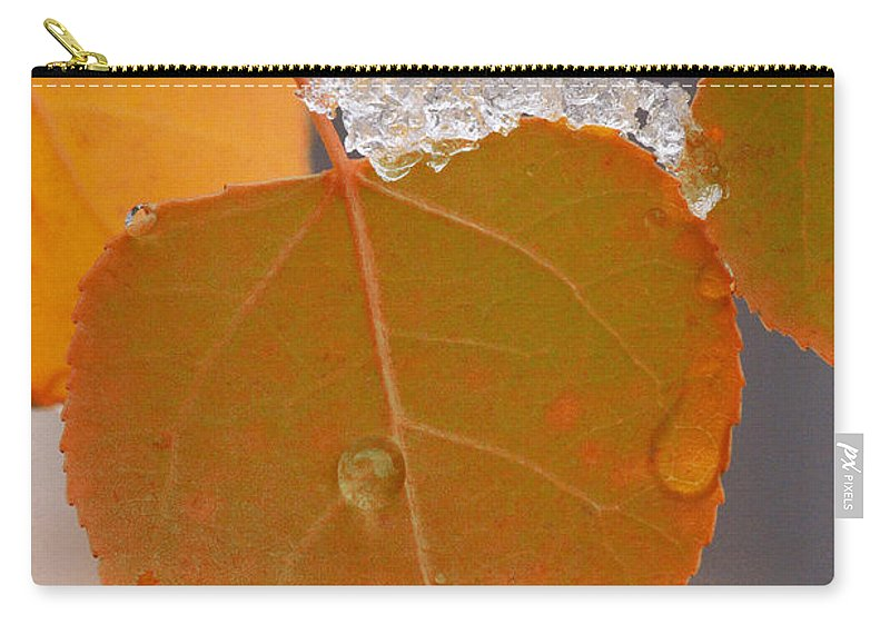 Grand Teton Carry-all Pouch featuring the photograph Touch Of Winter by Sandra Bronstein