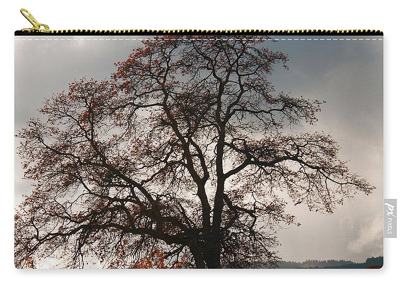 Autumn Carry-all Pouch featuring the photograph Touch The Sky by Merrill Beck