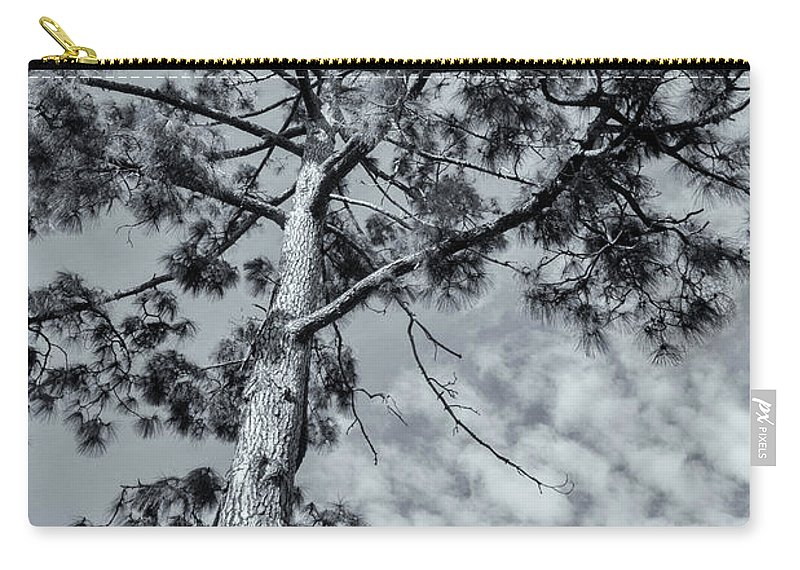 Tree Carry-all Pouch featuring the photograph Towering by Linda Lees
