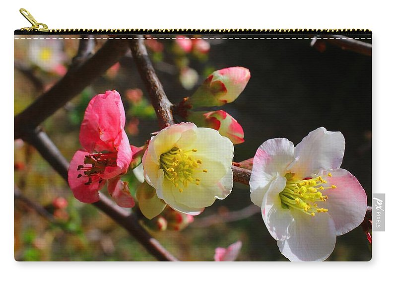 Quince Carry-all Pouch featuring the photograph Toyo-nishiki by Kathryn Meyer