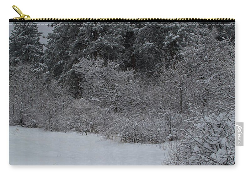 Flatirons Carry-all Pouch featuring the photograph Traildog Loving The Winter Scene In The Flatirons by Cary Leppert