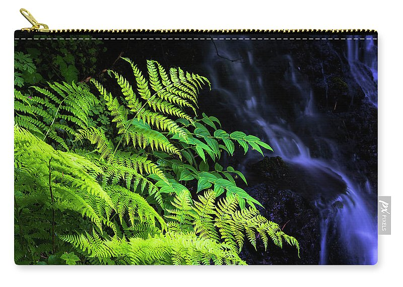 Canyon Trail Carry-all Pouch featuring the photograph Trailside Plants by Robert Potts