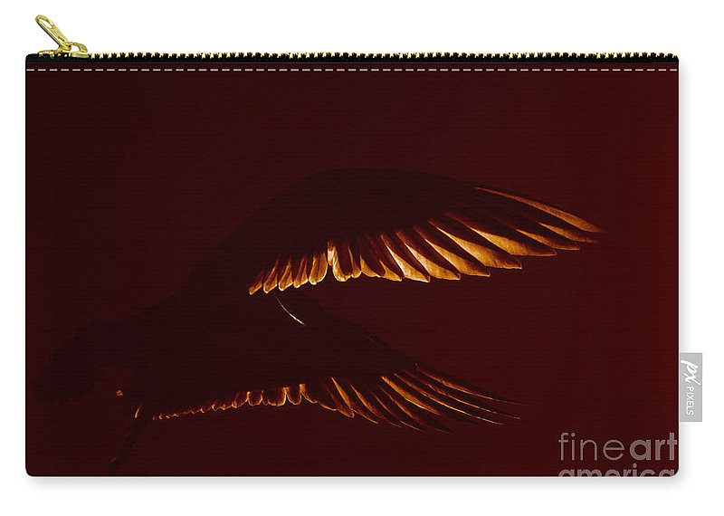 Photography By Paul Davenport Carry-all Pouch featuring the photograph Transiently Translucent by Paul Davenport