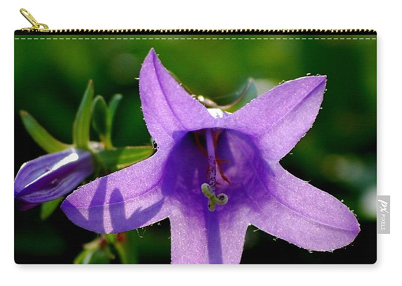Digital Photography Carry-all Pouch featuring the digital art Translucent by David Lane