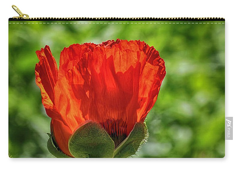 Poppy Carry-all Pouch featuring the photograph Translucent Poppy by Larry Pegram