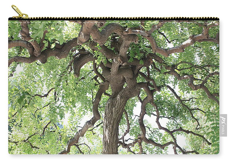 Tree Carry-all Pouch featuring the photograph Tree At Ming Tombs by Carol Groenen