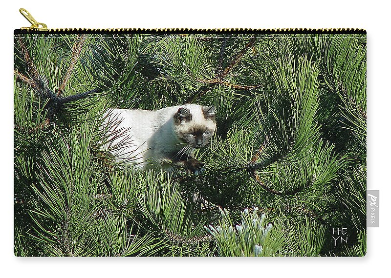 Green Carry-all Pouch featuring the photograph Tree Bandit by Shirley Heyn