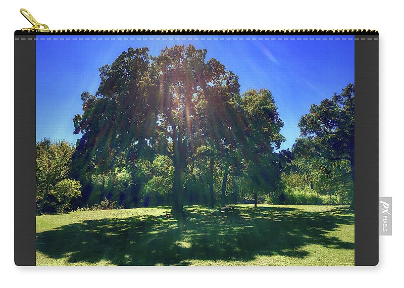Tree Carry-all Pouch featuring the photograph Tree Bathed In Sun by Doris Aguirre