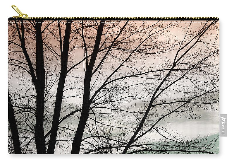 canvas Print Carry-all Pouch featuring the photograph Tree Branches by James BO Insogna