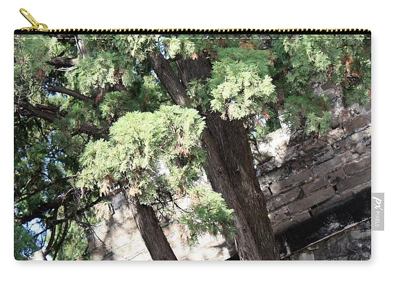China Carry-all Pouch featuring the photograph Tree Growing Through Wall by Carol Groenen