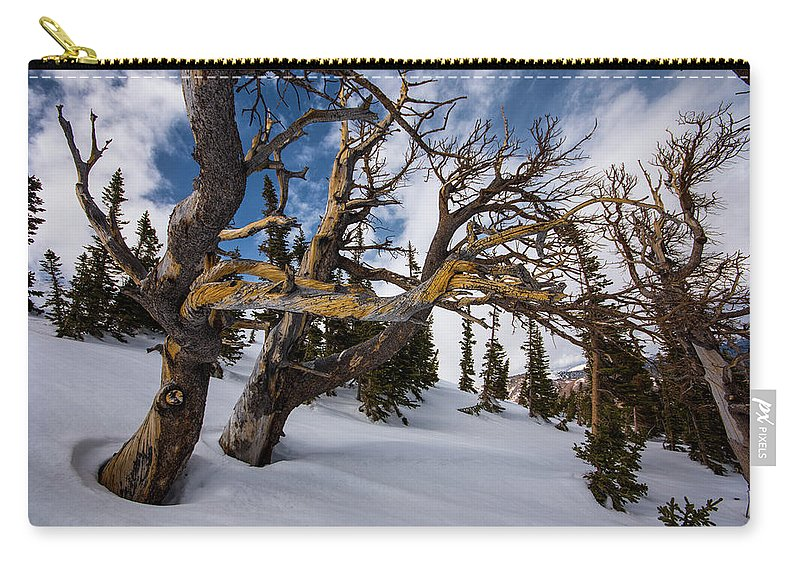 Landscape Carry-all Pouch featuring the photograph Tree Life In Winter by Rob Lantz