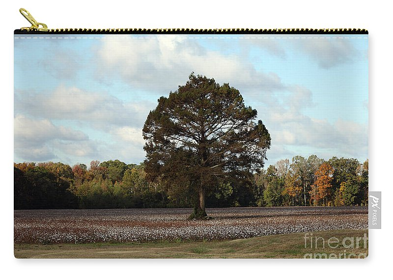 Tree Carry-all Pouch featuring the photograph Tree No Fog by Amanda Barcon