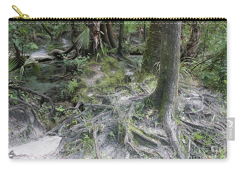 Lithia Springs Carry-all Pouch featuring the photograph Tree Roots And Lithia Springs by Carol Groenen