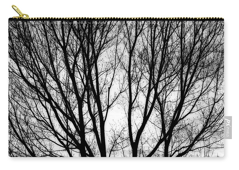 Silhouette Carry-all Pouch featuring the photograph Tree Silhouettes In Black And White by James BO Insogna