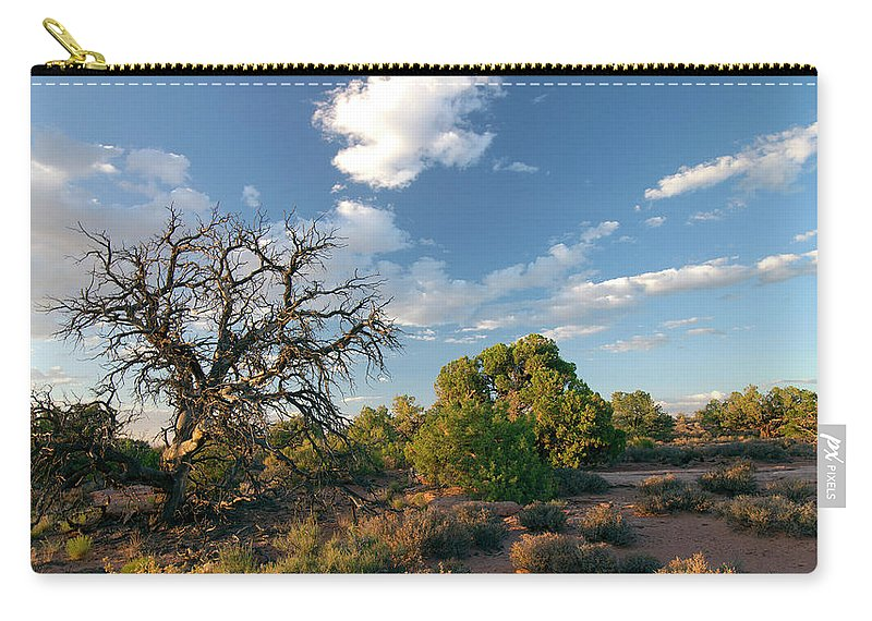 Utah Carry-all Pouch featuring the photograph Tree Sky Utah by Richele Helander