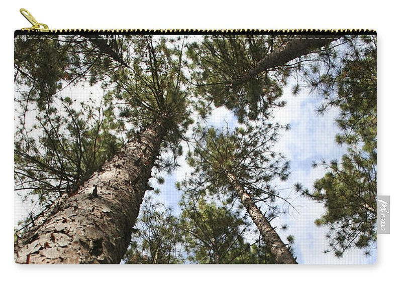 Autumn Carry-all Pouch featuring the photograph Tree Stand by Margie Wildblood
