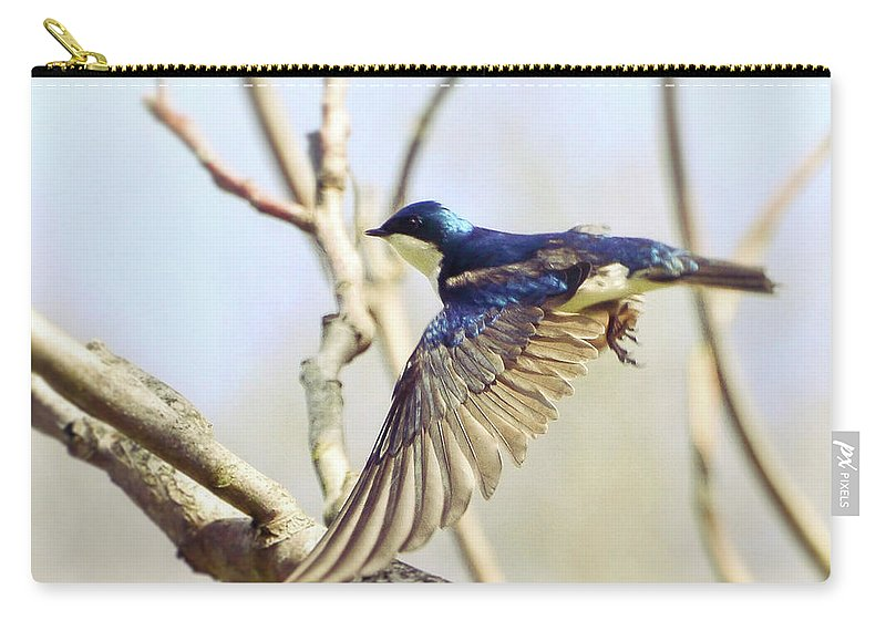 Tree Swallow Carry-all Pouch featuring the photograph Tree Swallow In Flight by Kerri Farley