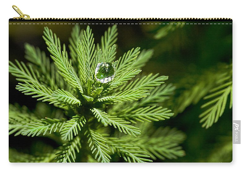 Dew Carry-all Pouch featuring the photograph Tree Top Dew Drop by Christopher Holmes