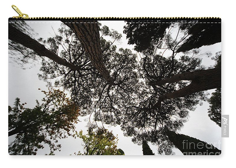 Tree Carry-all Pouch featuring the photograph Tree Tops by Vladi Alon