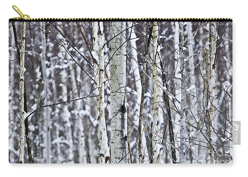 Winter Carry-all Pouch featuring the photograph Tree Trunks Covered With Snow In Winter by Elena Elisseeva