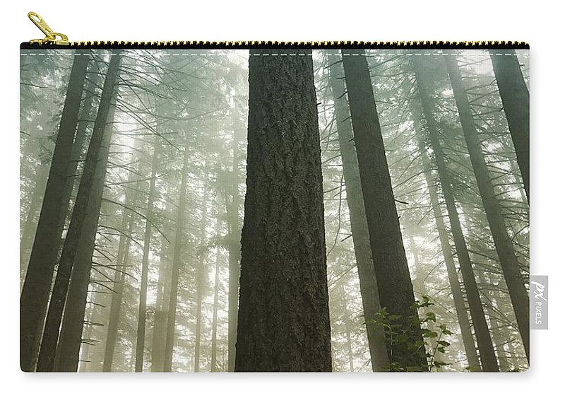 Carry-all Pouch featuring the digital art Treed by Amanda Dresen