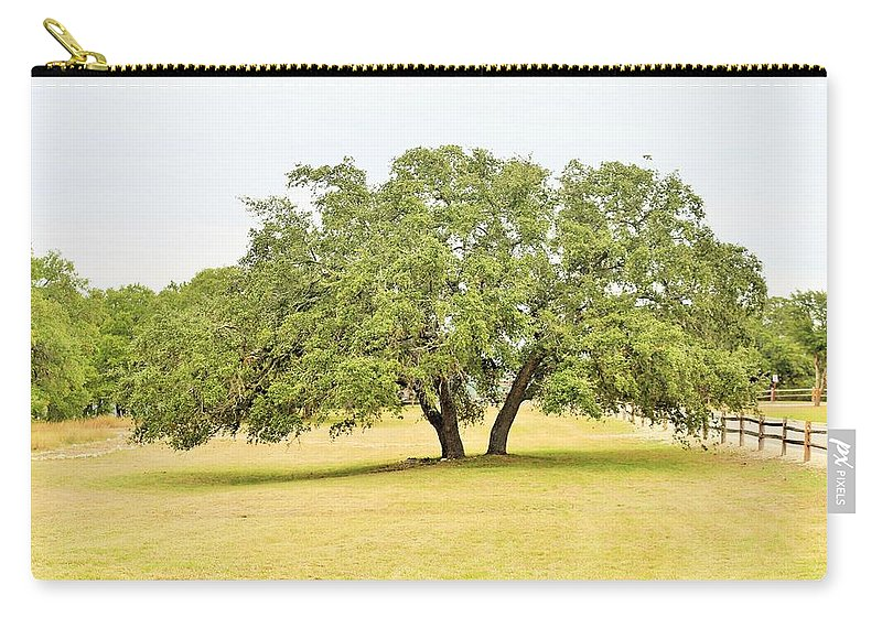 Carry-all Pouch featuring the photograph Trees 004 by Jeff Downs