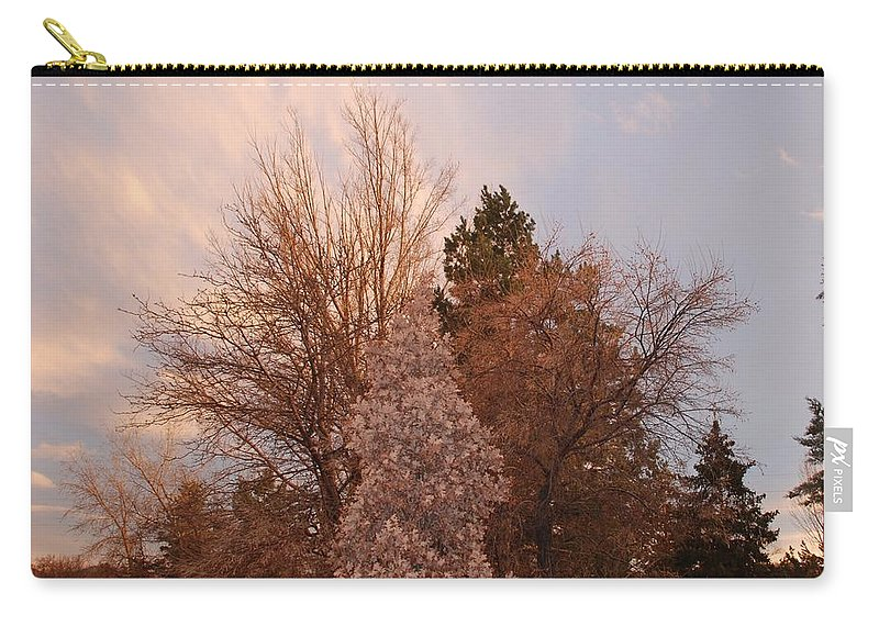 Trees Carry-all Pouch featuring the photograph Trees At The State Capital by Rob Hans