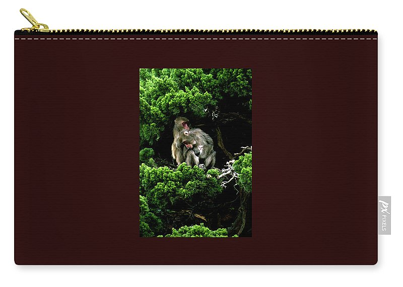 Trees Carry-all Pouch featuring the photograph Trees In Japan 10 by George Cabig