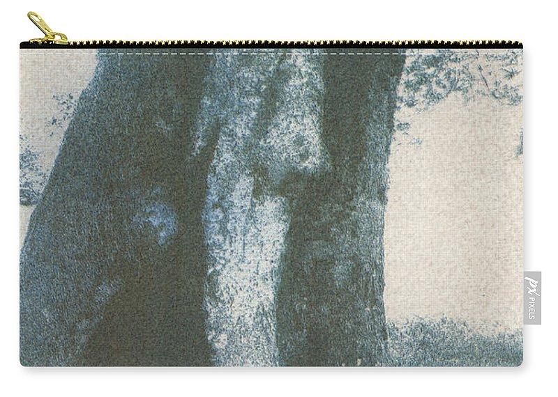 Gumprint Carry-all Pouch featuring the photograph Treespirit-1 by Casper Cammeraat