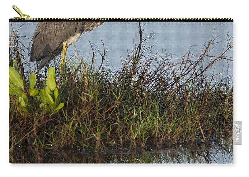 Tri-colored Carry-all Pouch featuring the photograph Tri-colored Heron And Reflection by David Watkins