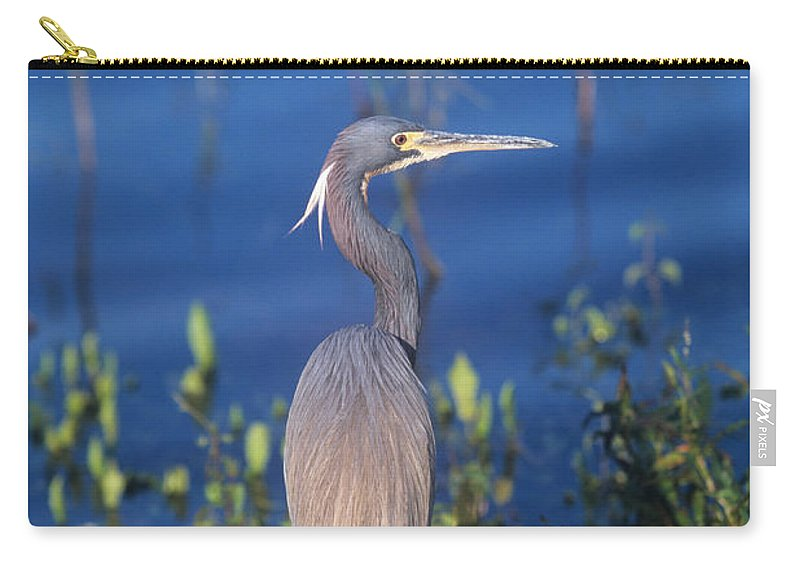 Bird Carry-all Pouch featuring the photograph Tricolored Heron In Monet Like Setting by John Harmon