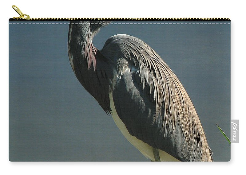 Nature Carry-all Pouch featuring the photograph Tricolored Heron by Peg Urban