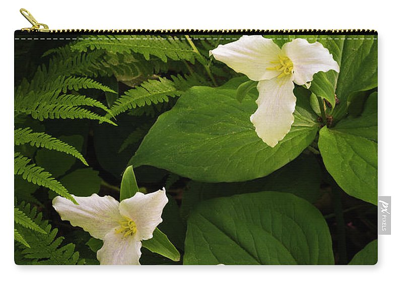Minnesota Carry-all Pouch featuring the photograph Trillium by Joe Mamer
