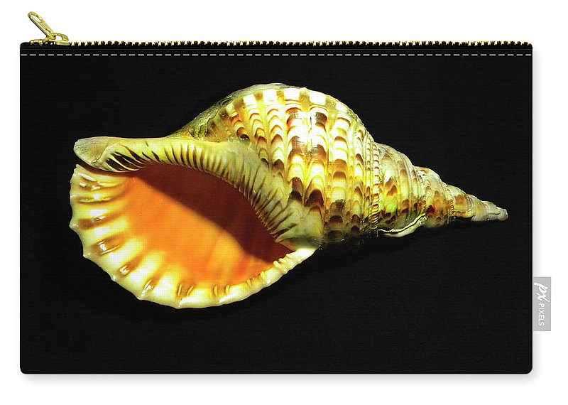 Frank Wilson Carry-all Pouch featuring the photograph Triton Trumpet Seashell Cymatium Tritonis by Frank Wilson