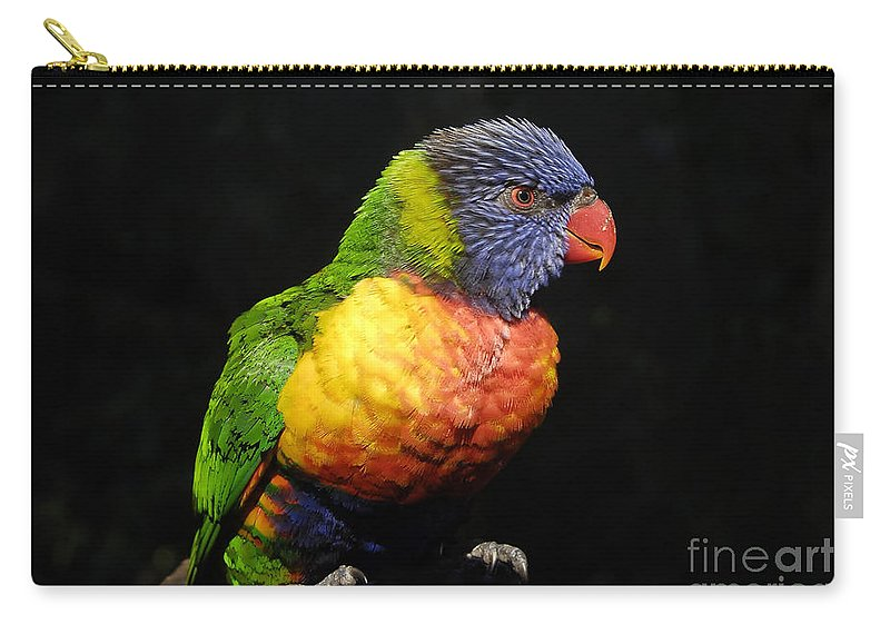 Tropical Carry-all Pouch featuring the photograph Tropical Colors by David Lee Thompson