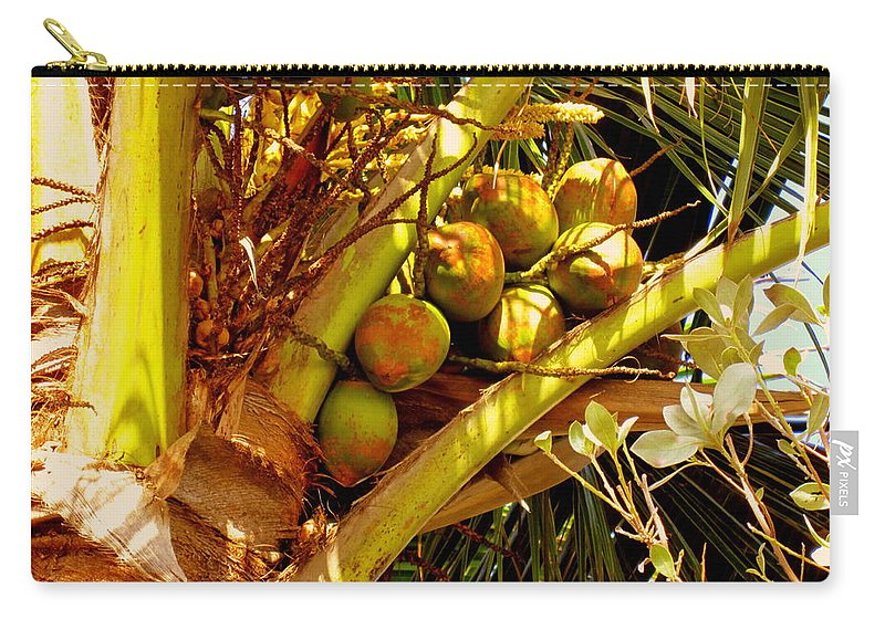 Coconuts Carry-all Pouch featuring the photograph Tropical Dreams 1 by Susanne Van Hulst