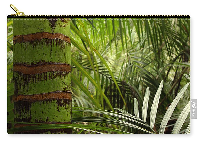 Bush Carry-all Pouch featuring the photograph Tropical Forest Jungle by Les Cunliffe