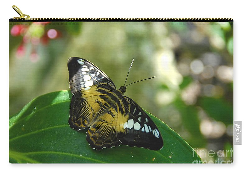 Butterfly Carry-all Pouch featuring the photograph Tropical Garden Beauty by David Lee Thompson