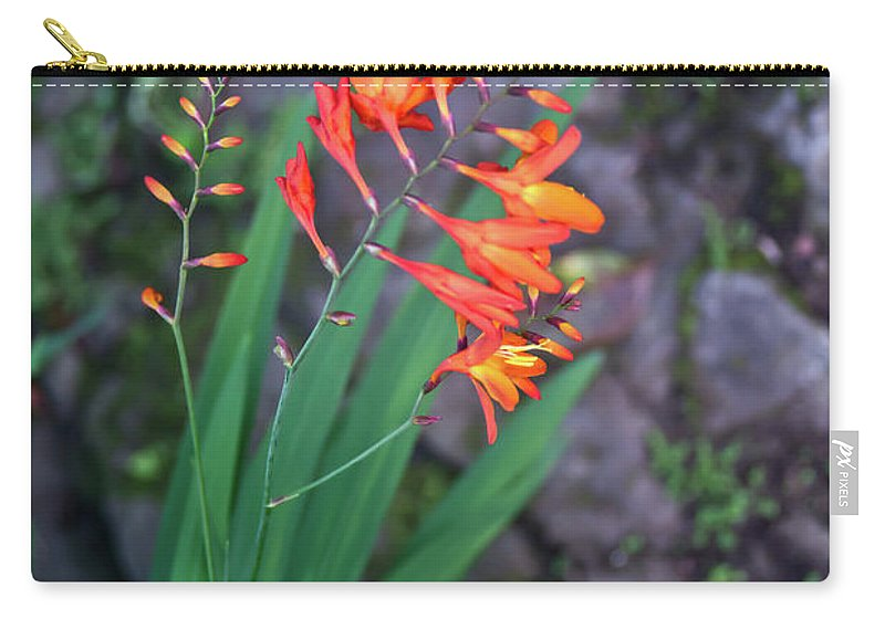 Tropical Carry-all Pouch featuring the photograph Tropical Orange Lily by Douglas Barnett