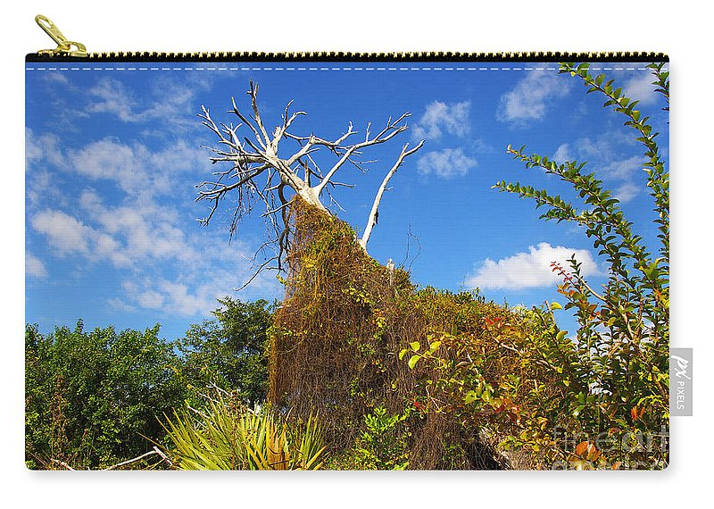 Carry-all Pouch featuring the photograph Tropical Plants In A Preserve In Florida by Zal Latzkovich