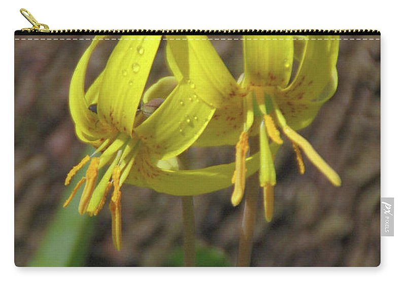 Flowers Carry-all Pouch featuring the photograph Trout Lily 1068 by Guy Whiteley