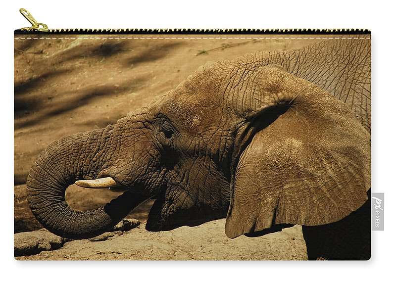 Elephant Carry-all Pouch featuring the photograph Trunk Show by Donna Blackhall