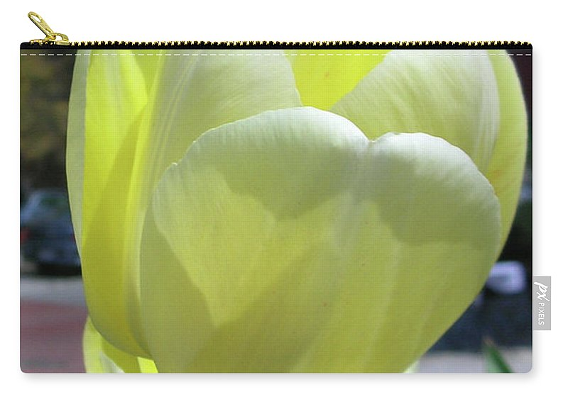 Flowers Carry-all Pouch featuring the photograph Tulip 0761 by Guy Whiteley