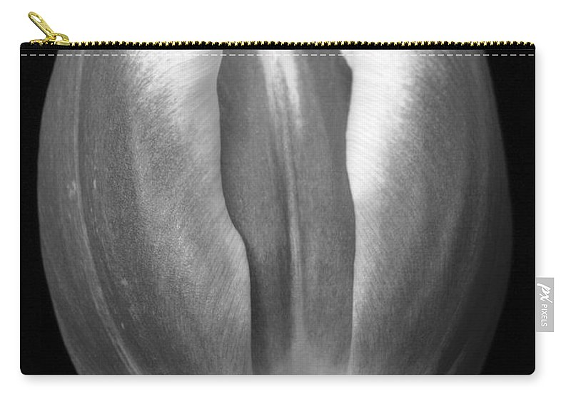 Lehtokukka Carry-all Pouch featuring the photograph Tulip 2 by Jouko Lehto