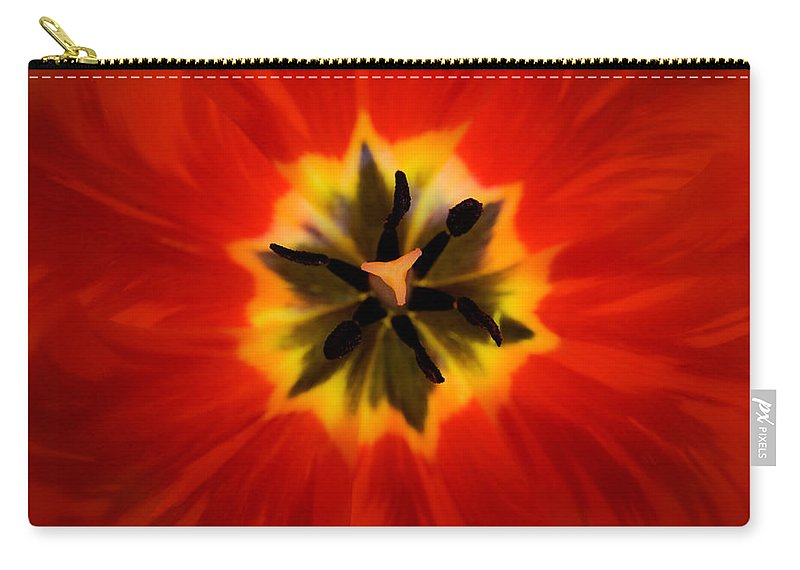 Tulip Carry-all Pouch featuring the photograph Tulip Explosion Kaleidoscope by Teresa Mucha