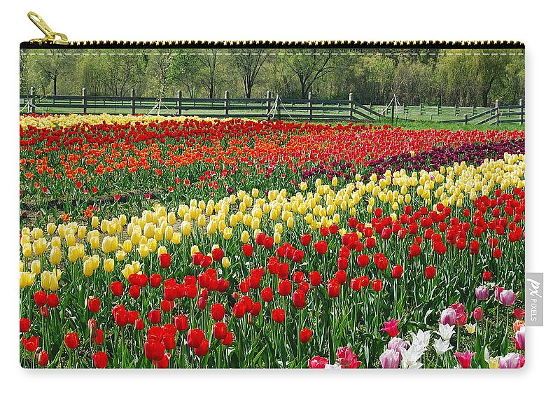 The Yellow And Red Rows Of Tulips On The Farm Bring The Feeling Of Spring Into The Home. Carry-all Pouch featuring the photograph Tulip Fields by Michael Peychich