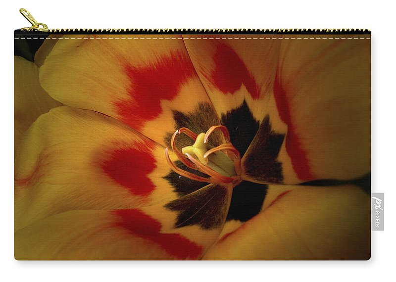 Flowers Carry-all Pouch featuring the photograph Tulip Flair by Nancy Griswold